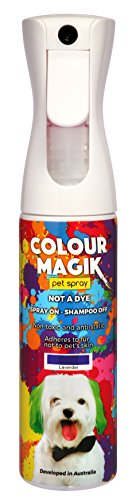 Petway Petcare Pet Paint Spray for Dogs 280 Ml – Color Safe Temporary Dog Hair Color Spray - Non Toxic, Eco Friendly, Propellant Free Dog Paint Lavendar