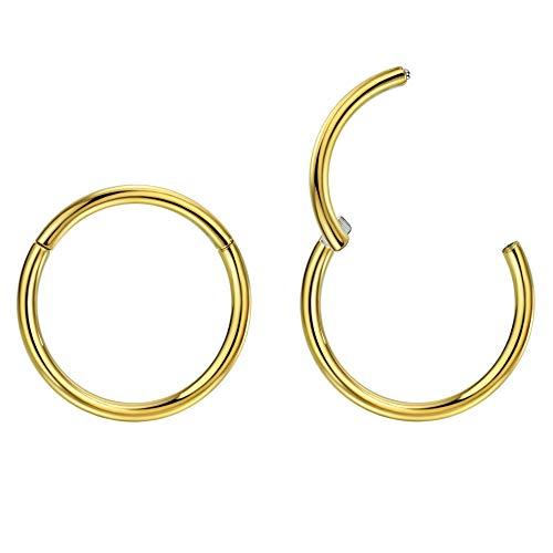 2pcs G23 Titanium Nose Rings Small Earrings Hoop 5mm Helix Earring 16g Cartilage Earring Rook Earrings Daith Earrings Tragus Earrings Anti-Tragus Earring Gold Hoop Nose Ring Nose Rings 16 Gauge