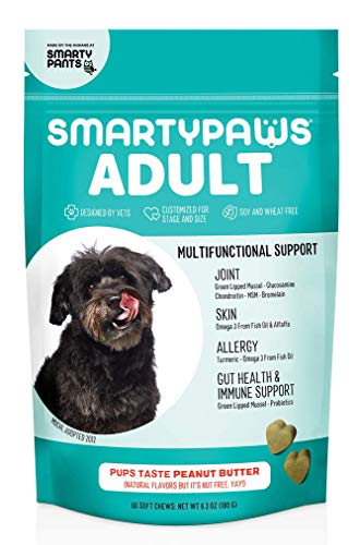 SMARTYPAWS Dog Vitamin and Supplement: Glucosamine, Probiotics for Gut Health & Immune Support Omega 3 Fish Oil, Chondroitin, MSM for Hip & Joint Support, Organic Turmeric, Chewable (60 Count)
