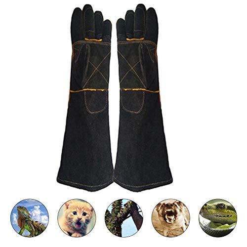 Dadahuam Tierhandschuhe, Bissfeste Tierhandschuhe, Langlebige Bissfeste Handschuhe Für Hunde, Katzen, Vögel, Schlangen, Wildtiere Und Gartenhandschuhe Big Sale
