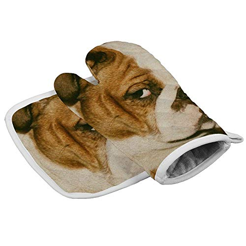 QSMX Furry English Bulldog Oven Mitts and Pot Holders Set, Novelty Heat Resistant Non-Slip Food Grade Kitchen Mitten Cooking Gloves for Kitchen, Baking, BBQ, Grilling