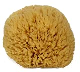 Natural Sea Sponge 6-7' by Spa Destinations 'Creating The At-Home Spa Experience'