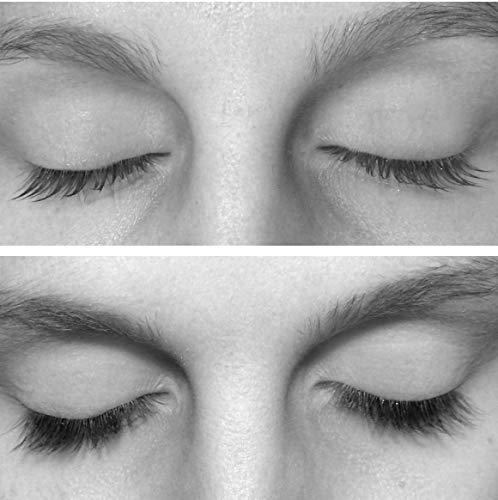 Tolure Cosmetics Wimpernserum & Augenbrauenserum - Wimpernseren & Augenbrauenseren