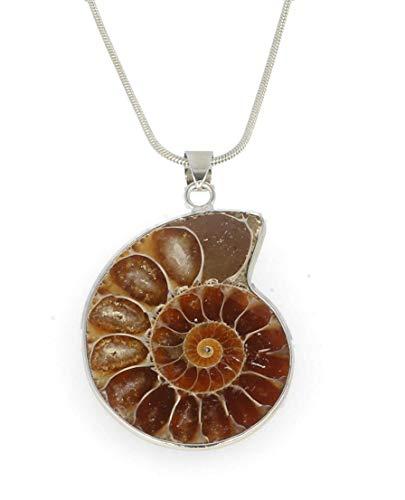 Serafino Ammonite Necklace Pendant Gift Box Healing Crystal Fossil Jewellery Millions of Years Old (Ammonite)