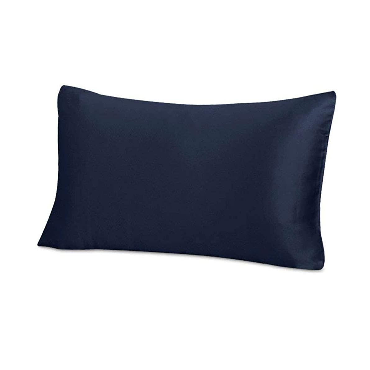 THXSILK Silk Pillowcase for Hair and Skin-25 Momme Mulberry Silk Pillow Cover with Hidden Zipper, Pure Silk on Both Sides, Standard Size 20
