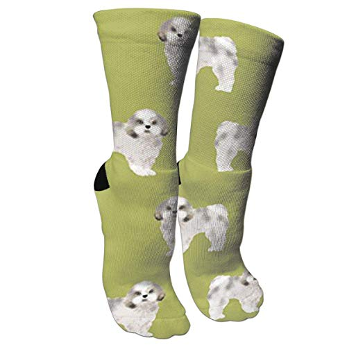 SDGSS Hoge kwaliteit ademende sokken Shih Tzu Leuke Hond Compressie Sokken voor Mannen & Vrouwen - Beste voor Hardlopen, Verpleegkundigen, Shin Splints, Flight Travel, Skiën & Zwangerschap