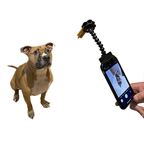 Pet Selfie Tool Smartphone Attachment Dog Selfie Stick Cellphone Treat Holder for Training Perfect Photo of Dogs Cats Captivate Attention Portrait Compatible on All Smartphones with Case (Black)