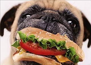 Dog Eats Cheeseburger - Avanti Funny/Humorous Pug Birthday Card