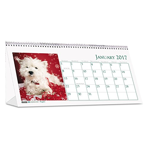 HOD3659 - Recycled Puppy Photos Desk Tent Monthly Calendar Photo #2