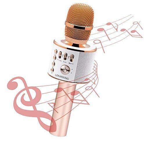 Mikrofon Stereo Player für Musik spielen KTV,Party, als Lautsprecher für PC, Laptop, iPod, iPad, und Android/iOS oder Alle Smartphone