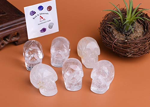 AMOYSTONE 6pcs Clear Quartz Crystal Skull Collectible Figurines Human Skull Statue Hand Carved Mini 1.5'