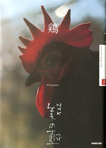 NHK 美の壺 鶏 (NHK美の壺)