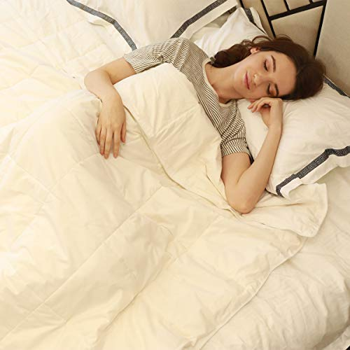 100% Silk Comforter All Season Luxury Silk Duvet with Cotton Covered,...