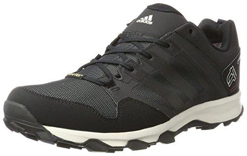 adidas Kanadia 7 Trail GTX Herren Laufschuhe, Grau (DKGREY/CBLACK/CWHITE), 42 EU