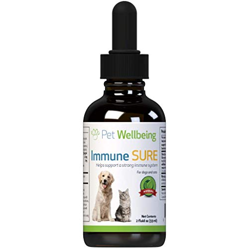 Pet Wellbeing - Immune Sure for Dogs - Natural Immune System Support for Dogs - 2oz (59ml)