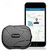 Localizador GPS para Coche,4G GPS Coche Antirrobo GPS Tracker con Imán Fuerte Oculto,Alarma Anti-robo, Límite de Velocidad y Geo-Cerca para Android y IOS TK905