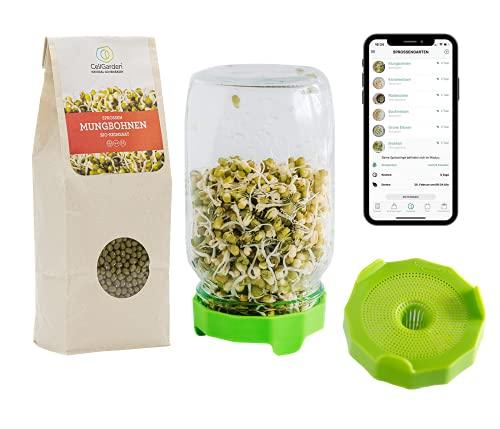 Cell Garden Sprossen Anzuchtset - Starter Set | Keimglas – Sprossenglas – Keimdeckel Grün | 500g Bio Mungbohnen Sprossen Samen für Sprossen und Microgreens (Grün)
