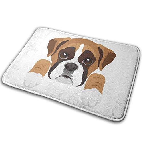 BLSYP Felpudo Boxer Dog Non-Slip Welcome Mat Entrance Way Rug Easy to Clean Front Outdoor Doormat 24 x 16 Inch 🔥