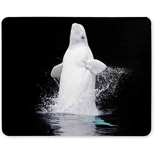 Durchbrechen des gefangenen Beluga-Wals im Vancouver Aquarium Rectangle Komfortable Computer-Mauspad-Gaming-Mousepad-Matte