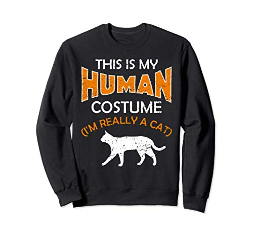 Vintage This Is My Human Costume I'm Really A Cat Halloween Sudadera