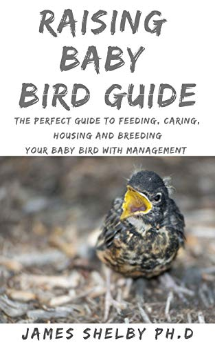 RAISING BABY BIRD GUIDE: The Perfect Guide To Feeding, Caring, Housing And Breeding Your Baby Bird With Management (English Edition)
