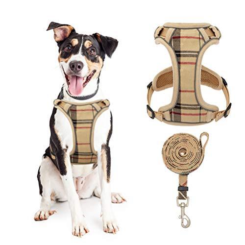 KOOLTAIL - Arnés de malla suave para cachorros con correa - Arnés ajustable acolchado para perro, sin tirar, fácil de poner y quitar chaleco para perros pequeños, cachorros, gatos, gatitos y caminar al aire libre