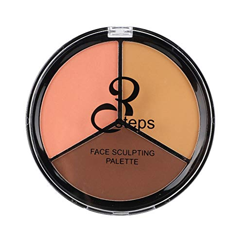 3in1 Palette de maquillage longue durée Face Highlight Concealer, Contour and Highlighting Powder Foundation Palette Contouring Cosmetics Tool Retouch Skin Tone(#2)