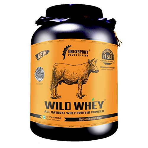 DREXSPORT - Wild Whey - Organic, Grass-fed Whey Protein Powder for Men and Women - Blend of Whey Protein Isolate + Whey Protein Concentrate - 2Kg Chocolate