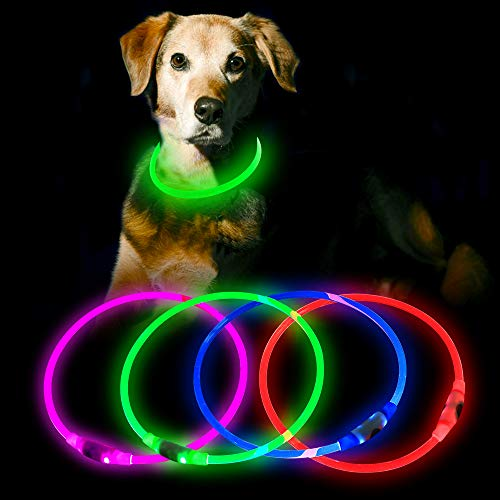 HiGuard LED Dog Collar USB Rechargeable Glowing Pet Collars Lighted Up Safety Necklace Glow in the Dark for You & Your Dogs (Green)
