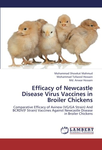 Efficacy of Newcastle Disease Virus Vaccines in Broiler Chickens: Comparative Efficacy of Avinew (VG/GA Strain) And BCRDV(F Strain) Vaccines Against Newcastle Disease in Broiler Chickens