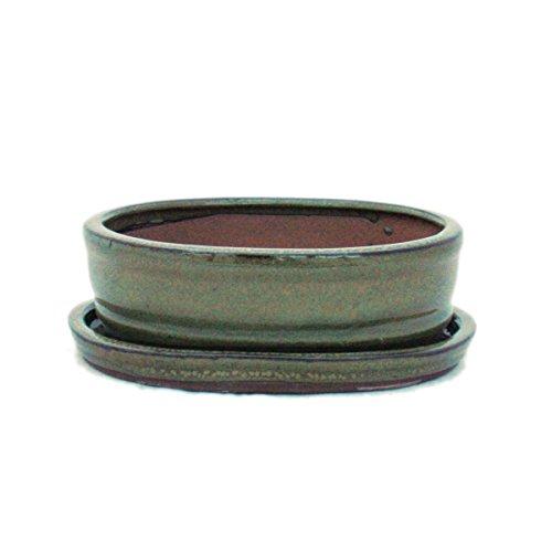 Bonsai pot avec soucoupes taille 2–brun-olive-modèle ovale-o7–15,5 cm-largeur : 12 cm-hauteur : 4,5 cm