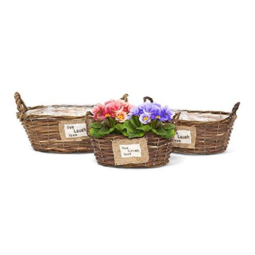 Relaxdays-10020059_440 Lot de 3 corbeilles à plantes fleurs oval HxlxP 19 x 38 x 27 cm en bois plusieurs formes et tailles intérieur plastique, marron