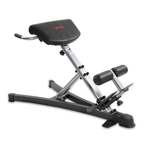 JHSHENGSHI Fitness Stuhl Gewicht Bank Exerciser Multifunktionale römische Hantel Bank Home Taille Bauch Trainer Ganzkörpertraining