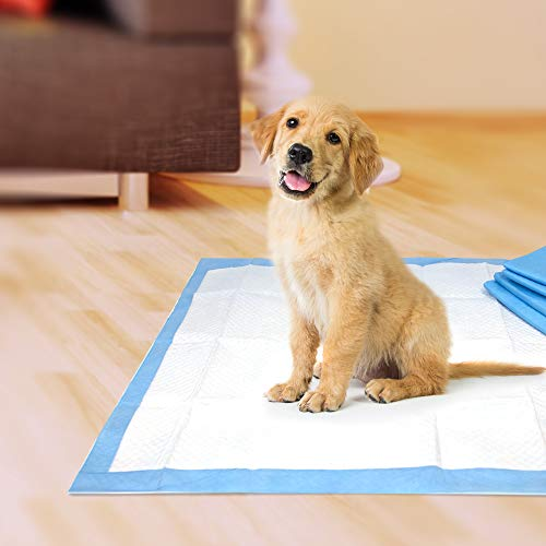 Wee-Wee Puppy Training Pee Pads 100-Count 22' x 23' Standard Size Pads for Dogs