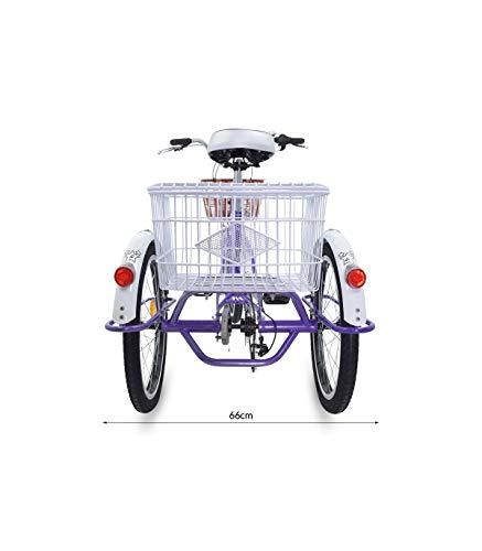 Riscko - Triciclo Adulto con Dos Cestas Bep-14 | Blanco Mont