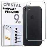 REY Protector de Pantalla Trasero para iPhone 7 / iPhone 8 / iPhone SE 2020, Cristal Vidrio Templado Premium
