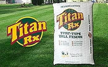 titan turf type tall fescue