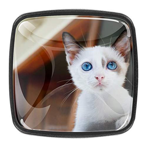 4 pomos de cristal colorido para armario, armario, cajón, tirador de puerta, diseño de gato