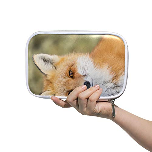 Sac à cosmétiques pour garçons Red Fox Vulpes Vulpes Assis Attention Gym Trousse de toilette pour femmes Pouch Pen Case Multifunctional Travel Pencil Case For Men Women