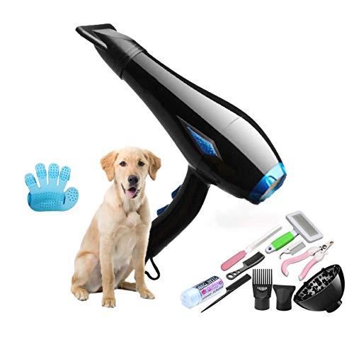 YLXD Mascotas Secador De Pelo - Útiles De Limpieza para Perro Gato De Alta Potencia Secador De Pelo Y Estética para Mascotas, Ultra Silencioso De Diseño