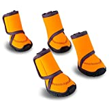 HaveGet Waterproof Dog Shoes Fluorescent Orange Dog Boots Adjustable Straps and Rugged Anti-Slip Sole Paw Protectors for All Weather Comfortable Easy to Wear Suitable for Medium Dog (XXS)