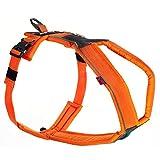 Line Harness von Nonstop, Brustgeschirr, Führgeschirr für Hunde, Größenverstellbar (6, Orange)