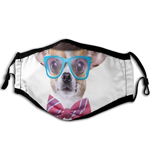 XINGAKA Gesichtsbedeckung,Smart Dog Chihuahua Welpe Fotokamera Lustige Tiere Wildlife Adorable Fashionable Modern,Sturmhaube Unisex Wiederverwendbar Winddicht Staubschutz Mund Bandanas Outdoor