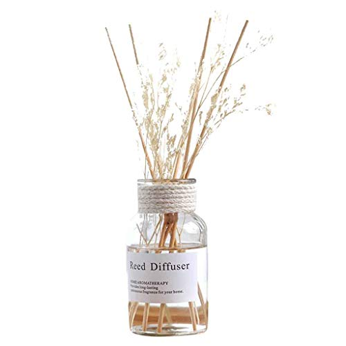 jieGorge Reed Oil Diffusers with Natural Sticks, Glass Bottle and Scented Oil 100 ML, Home Decor, for New Year (E)