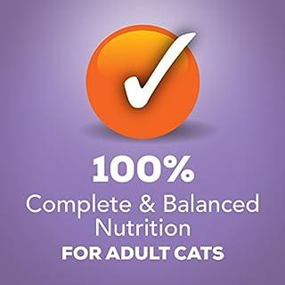 Purina Friskies Shreds Wet Cat Food - (24) 5.5 oz. Cans للبيع