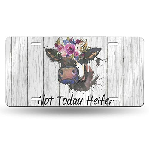 MSGUIDE Personalized Front License Plate Cover, Funny Cow Not Today Heifer Novelty Aluminum Metal Car Vanity Tag Plates Decorative for Men Women Girl Gift(6 X 12 Inch)