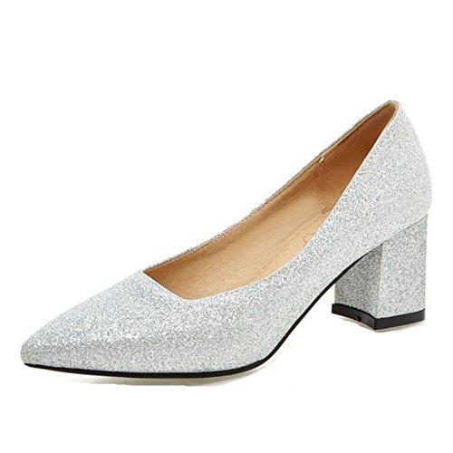 SJJH Damen Elegant Klassischer Pumps mit Blockabsatz Spitze Toe Übergrößen Schuhe (Silver, 43 EU)