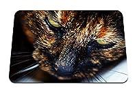 26cmx21cm マウスパッド (猫の銃口がクローズアップを発見) パターンカスタムの マウスパッド
