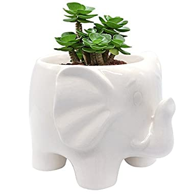 GeLive White Elephant Succulent Planter, Ceramic Plant Pot, Window Box, Animal Decor with Draining Hole, Foot Hollow, Retains Moisture