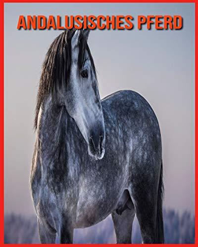 Andalusisches Pferd: Spaß beim Lernen von Fakten über Andalusisches Pferd